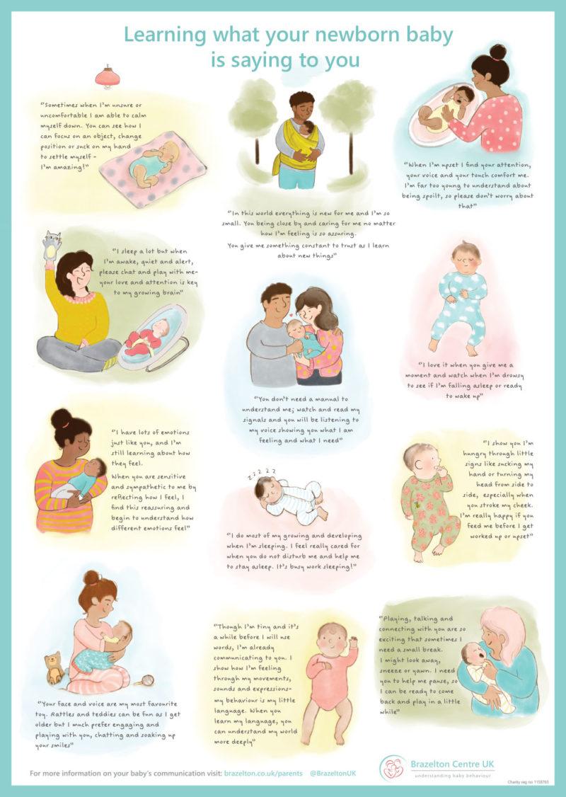 Brazelton-Baby-Communication-Poster